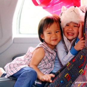 What the children like about Cameron Highlands trip
